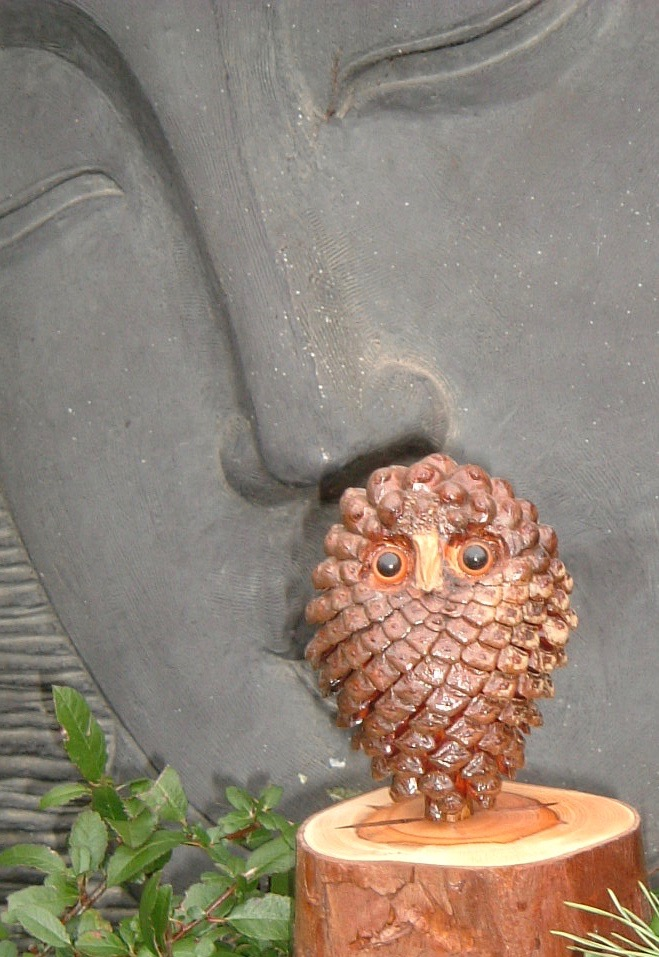 Wise owl.