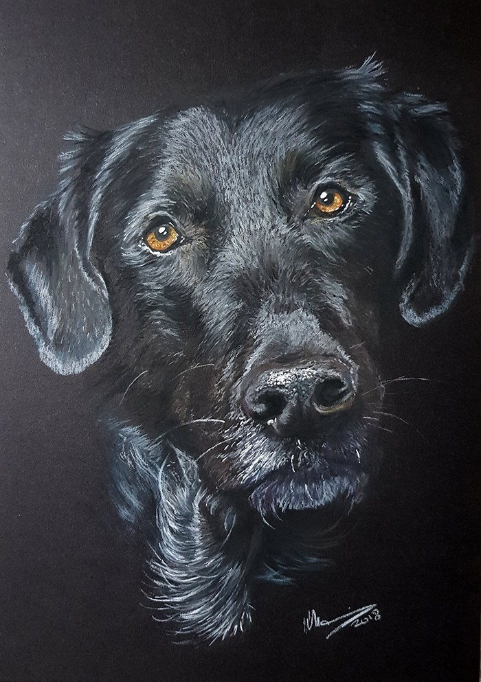 Drawn onto Daler Rowney A4 paper. Using pastels.