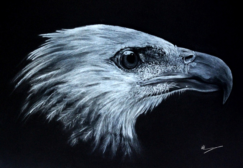 Drawn using just black and white charcoal and building up the layers.