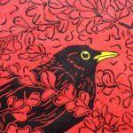 Berberis Blackbirda