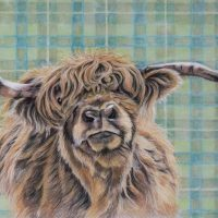 highland cow pastel small