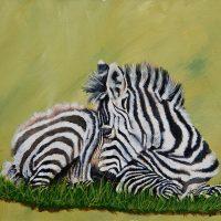 zebra, acrylic small